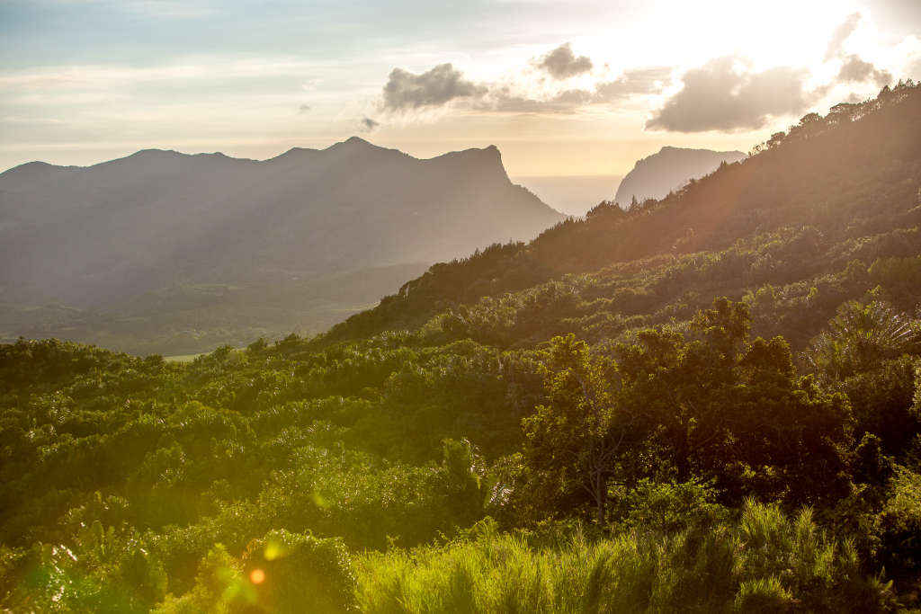 Sunset view of mountains at Rhumerie de Chamarel, Mauritius